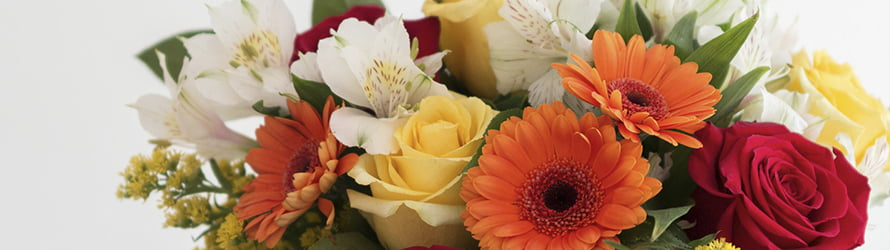 Send beautiful fresh flowers anywhere in Peterlee